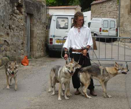 nos chiens loups tcheques